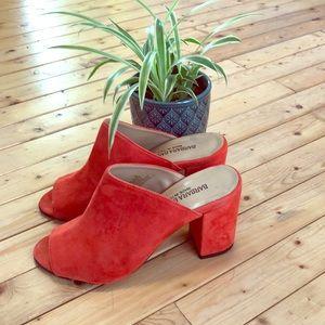 Coral Suede Mule Chunky Heel Sandals